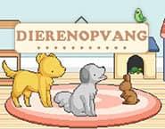 Animal Shelter Decoration
